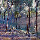 Rays Across the Gully by Lynda Robinson