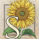S is for Sunflower card by Stephanie Smith