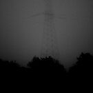 towering in the fog by paul erwin
