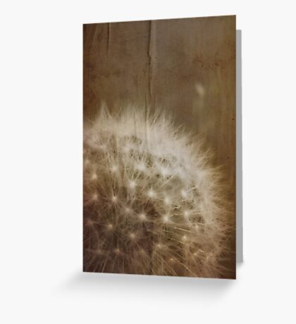 vintage dandelion Greeting Card