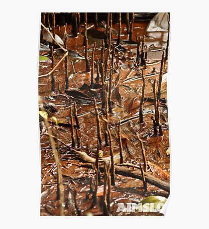 Sticks and Mud Poster