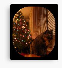 Christmas Kitty Waiting for Santa Canvas Print
