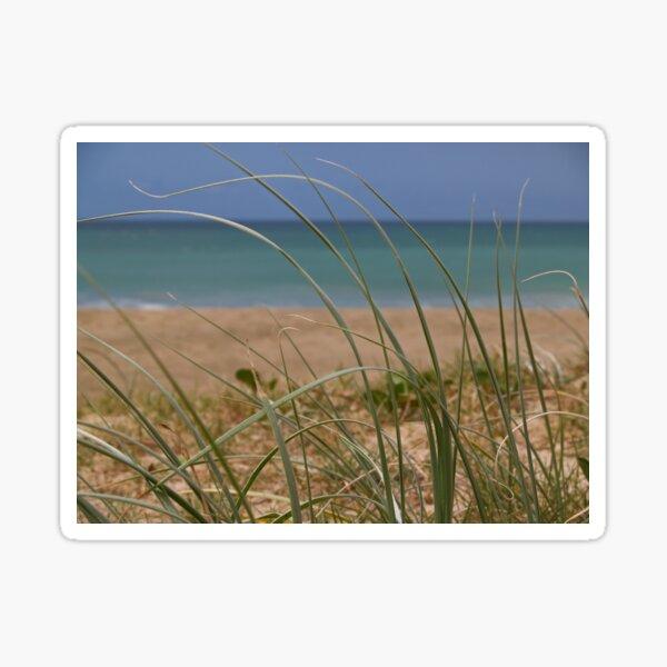 Seagrass Sticker