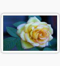 The Friendship Rose Sticker