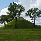 The Graves Creek Mound by Bryan D. Spellman