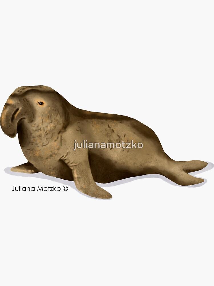 Elephant Seal by julianamotzko