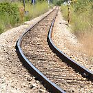 On The Right Tracks by Fay  Hughes