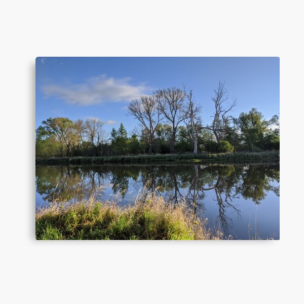 Tote Bäume im spiegelnden Fluss am Morgen Leinwanddruck