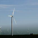 windwhirls by katpartridge