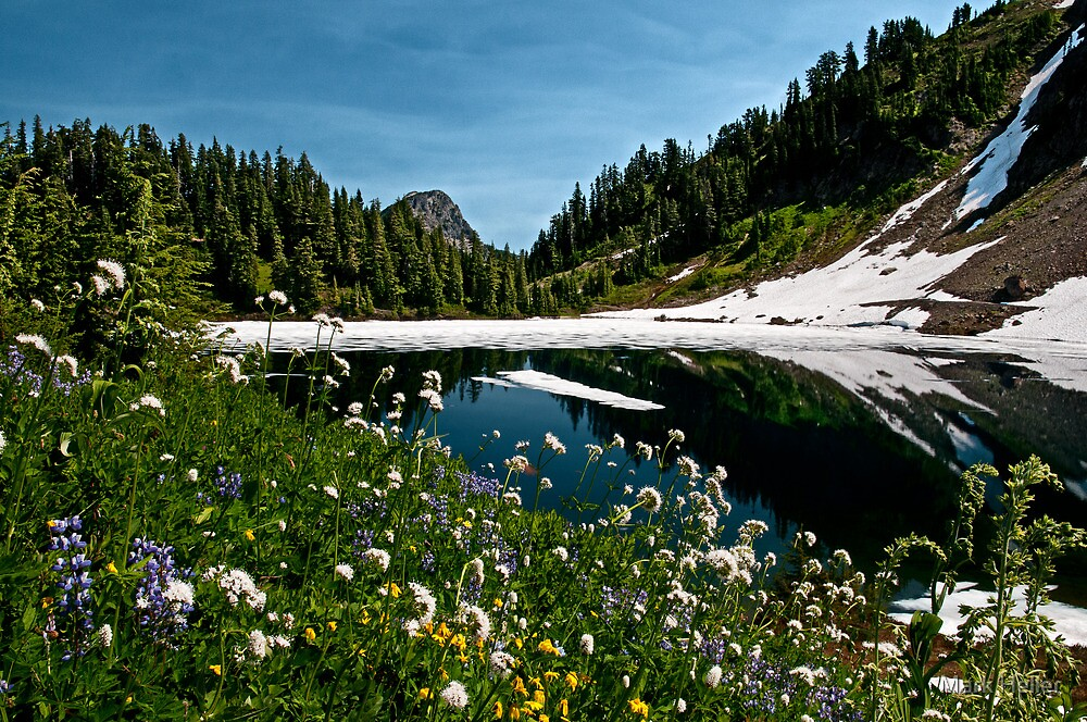 Twin Lakes in Summer - Mt. Baker-Snoqualmie N. F.  by Mark Heller