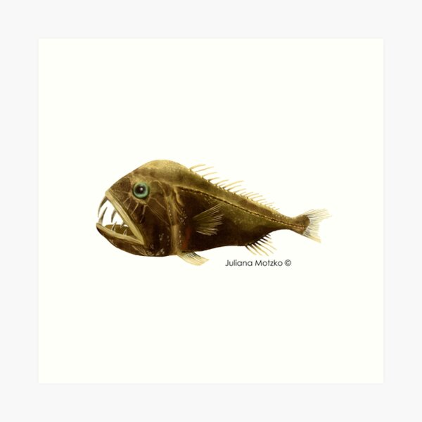 Fangtooth Fish Art Print