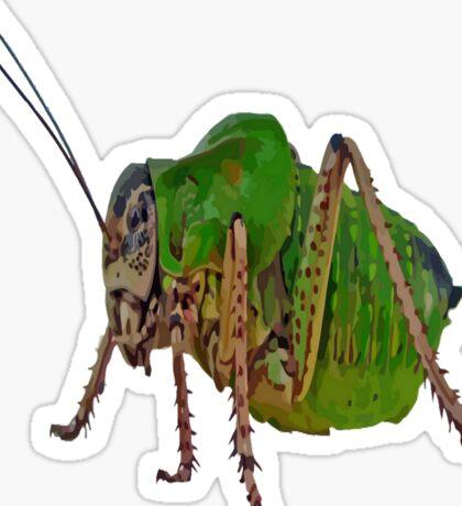 Katydid Vector On A Black Background Sticker