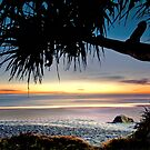 Another Day in Paradise - Miami Gold Coast Australia by Beth  Wode