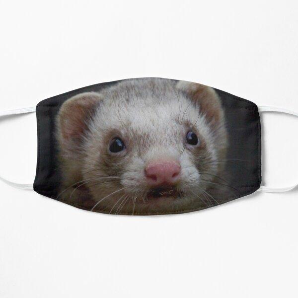 Ferret photo Mask