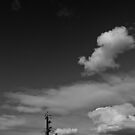 Stobie with Cloud by Gavin Kerslake