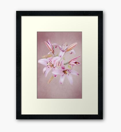 'Consider the Lilies of the Field'  Framed Print
