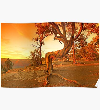 Grand Canyon Sunny Poster