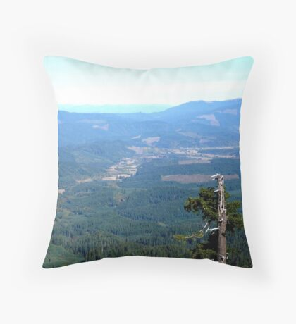 Snag With a View Throw Pillow