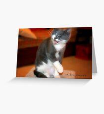 Chuckles © Vicki Ferrari Photography Greeting Card