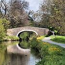 The Canal. by Irene  Burdell