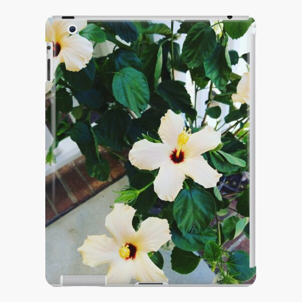 Morning Garden Yellow Hibiscus  iPad Snap Case