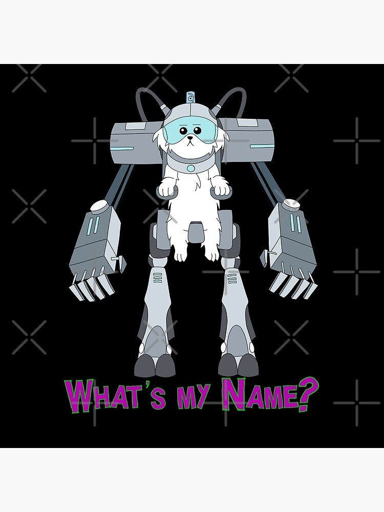 What's my name? by SH3PP
