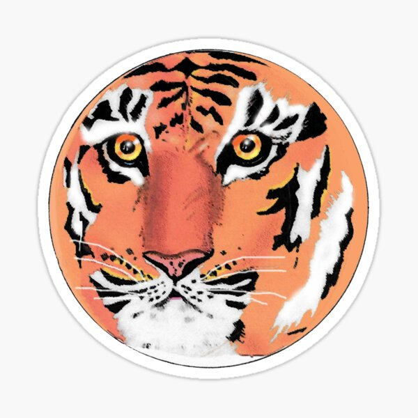 Tiger, Tiger Staring at Me Sticker