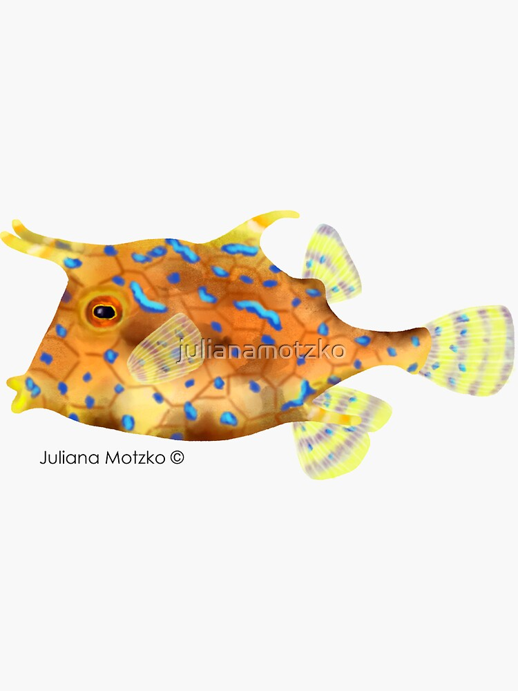 Thornback Cowfish by julianamotzko