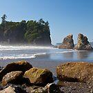Ruby Beach, Olympic National Park, Washington Coast by Barb White