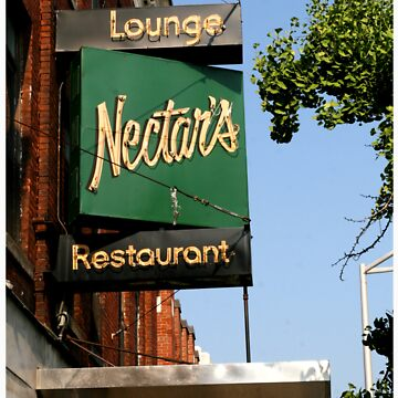 A Picture of Nectar's by maxharrisart