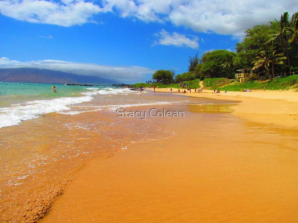 Our Honeymoon Beach in Maui by Stacy Colean