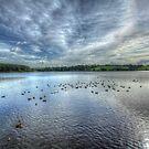 Thornton Reservoir 2 by MartinMuir