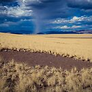 Storm on the Horizon by Jill Fisher