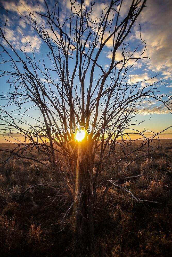 Sunrises at Bourkes Backyard by David Petranker