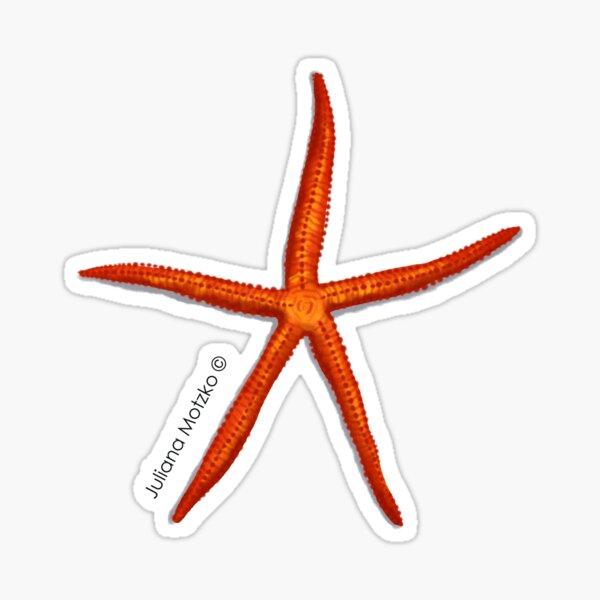 Velvety Sea Star Sticker