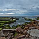 23rd August 2012 by David O'Sullivan