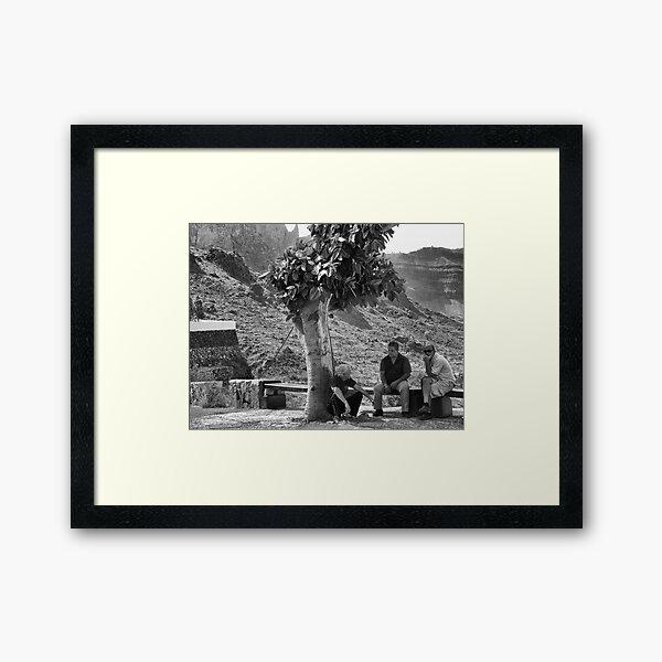The Shade Tree Framed Art Print