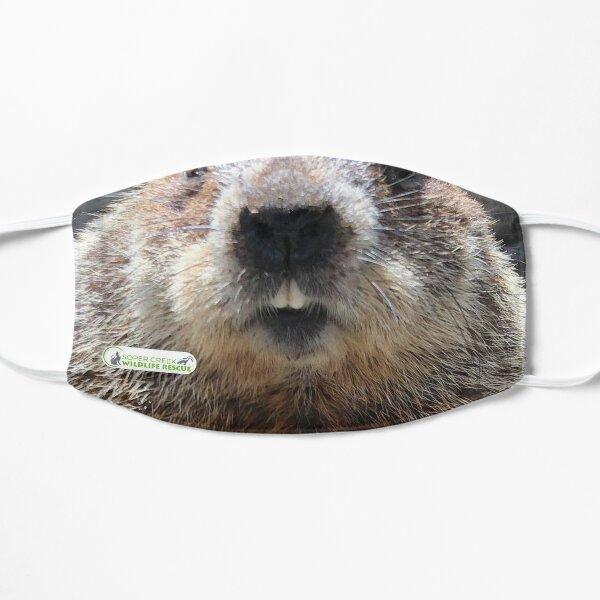 Alan the Groundhog Flat Mask