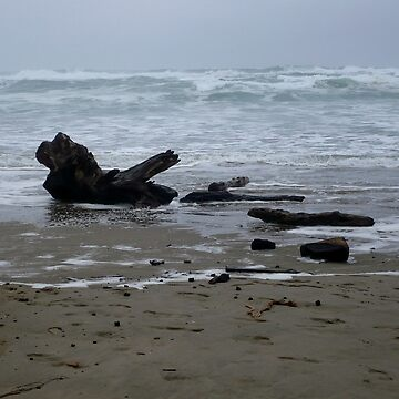 Driftwood by GlockGirl40