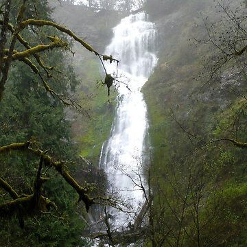 Munson Creek Falls by GlockGirl40