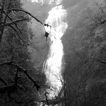 Eerie Munson Creek Falls by GlockGirl40