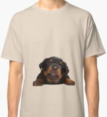 Cute Rottweiler With Tongue Out Isolated Classic T-Shirt