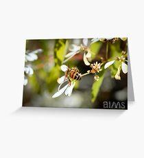 Bee's Bum Greeting Card