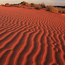 Sands of the Simpson Desert by Tim Coleman
