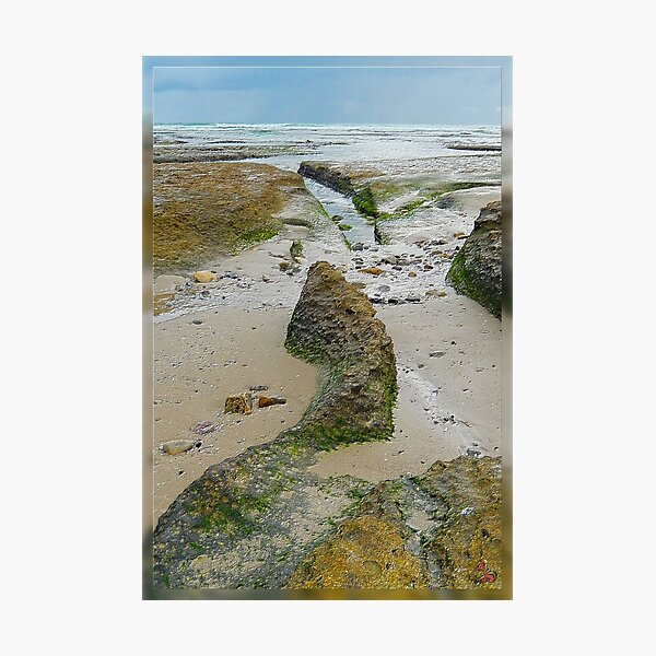 North-West Coast Tasmania ~ D1G1TAL-M00DZ ~ GALERIEBORD ~ STRANDGUT ~ GALLIMAUFRY ~ by tasmanianartist 240520 Photographic Print