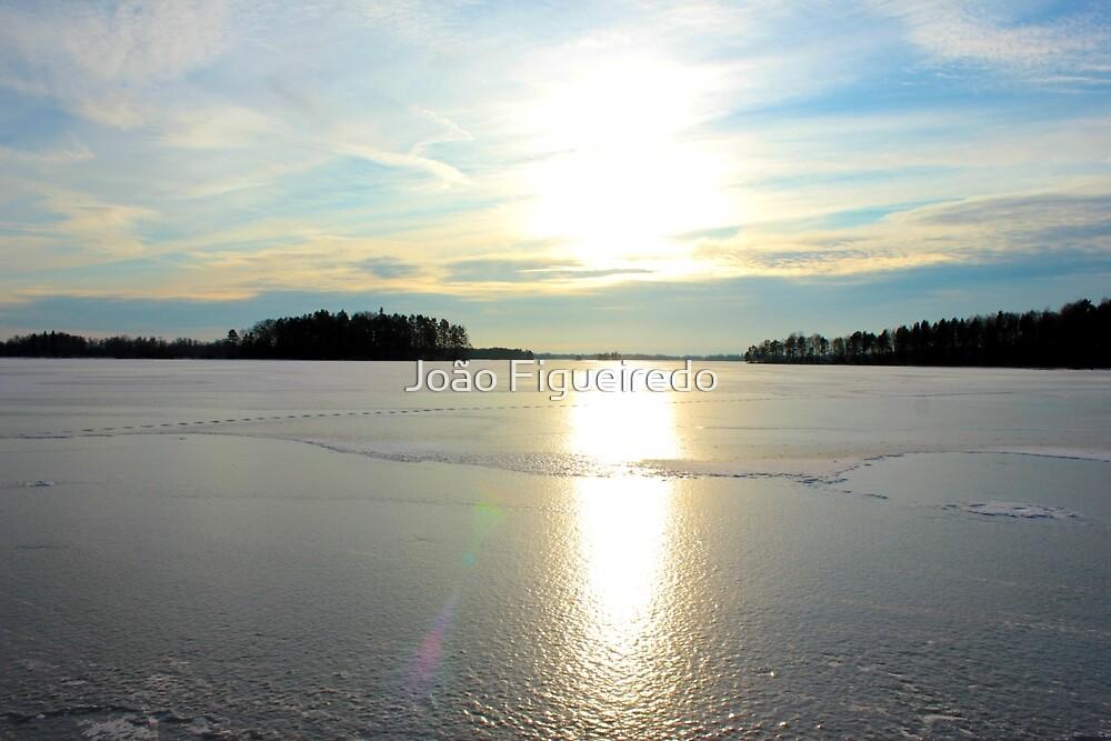 Herrestadsjön in winter season by João Figueiredo
