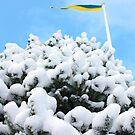 Swedish winter background by João Figueiredo
