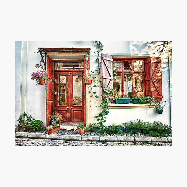 House dream Photographic Print
