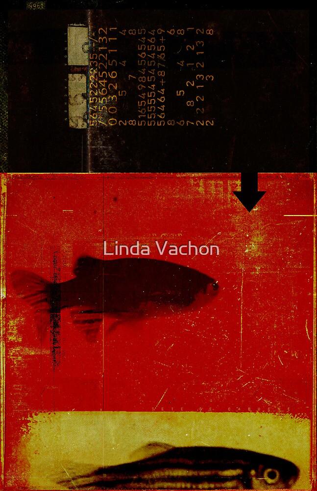 p-05 by linda vachon