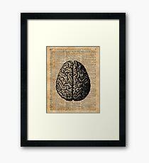 Weinlese-menschliche Anatomie-Gehirn-Illustrations-Wörterbuch-Buch-Seiten-Kunst Gerahmtes Wandbild